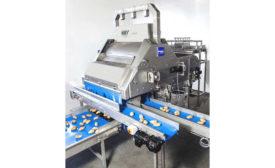 Potato Sorter Key Technology