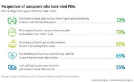 Plant-Based Meat Research Deloitte