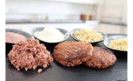 Premix Ingredients Plant-Based Meat Loryma