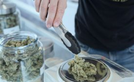 Bill to remove cannabis from federal controlled substances list passes milestone