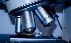 USDA funds nanotechnology research to improve food safety
