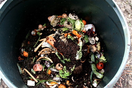 Food retailers and manufacturers seek to benchmark food waste