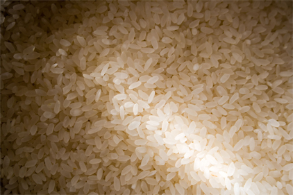FDA says arsenic levels in rice are safe