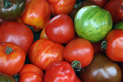 US tomato growers support revised suspension agreement for fresh tomatoes from Mexico