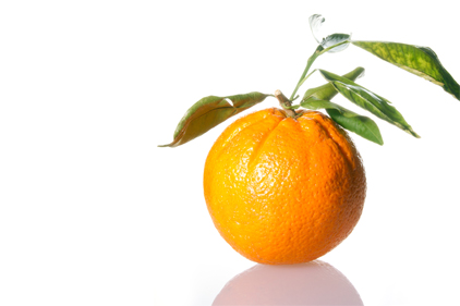 Organic industry talks to Congress on efforts to fight citrus greening