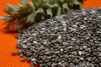 Canada recalls chia seeds with link to salmonella