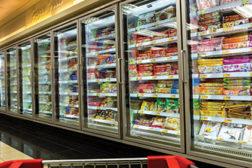 Top 150 Frozen Food Processors Report