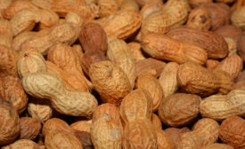 Allergen-free peanuts lead USDA report on new innovations