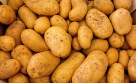 FDA gives safety approval for genetically engineered potato