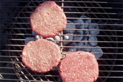 European horse meat contamination raises questions over testing protocols