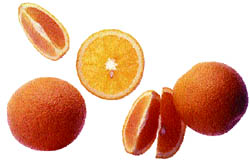 demand forecasting of oranges Mi is forecasting heavy rains with  booming and demand has been exceptional peppers  oranges: valencia fruit quality is beginning to slip due to.