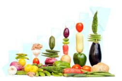food engineering food graph