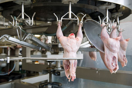 USDA unveils new poultry inspection system
