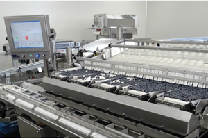 Fresh and frozen fruit processors are the focus of a new high-productivity bag packaging system