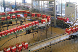 Bacardi-Martini plant packaging line