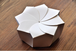 Biomimicry design origami technique