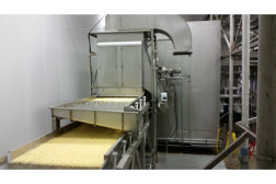 FPS Pulse Flow IQF freezer