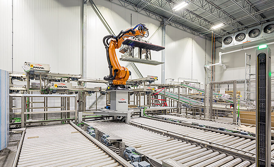 Tavil robotic palletizing system