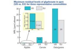 MRLs of glyphosate