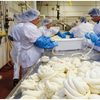 cheese production line
