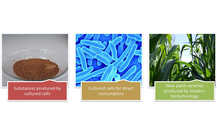 products produced with cell cultures
