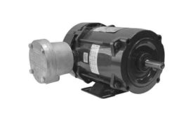 Explosion-Proof Motor
