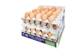 reusable egg carton