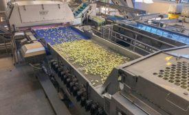 Digital apple sorter