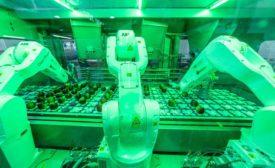 FE 0921 Field Reports: Rockit Apple Robots MHM