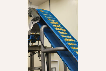 Conveying System Helps Quadruple Output For Chip Maker