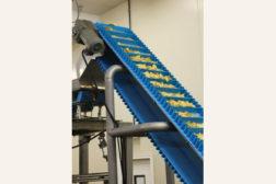 W.O.W. conveyor