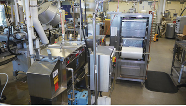 ross ribbon equipment blender food engineering
