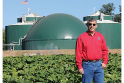 sustainable plant of the year bill chambers