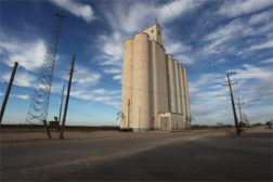 OSHA: Agriculture industry records highest fatality rate of any sector