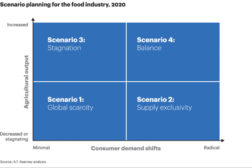 Feeding the world in 2030: Can innovation and technology keep up with growth?