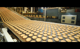 Cookies on conveyor belt