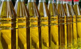 To produce top-notch olive oil today and market it around the world requires a level of automation that spans the entire supply chain